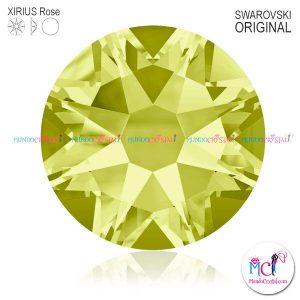 Xirius-Rose-Jonquil-213