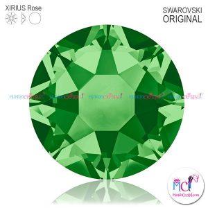 Xirius-Rose-fern green