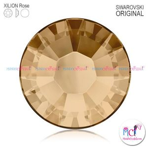 xilion-rose-2038 golden shadow