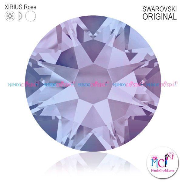 2088-Xirius-Rose-Provence-Lavender-283