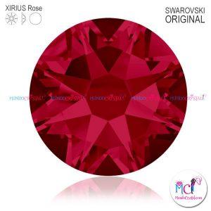 2088-Xirius-Rose-rubi-501